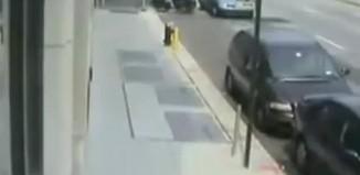motor hırsızlığı
