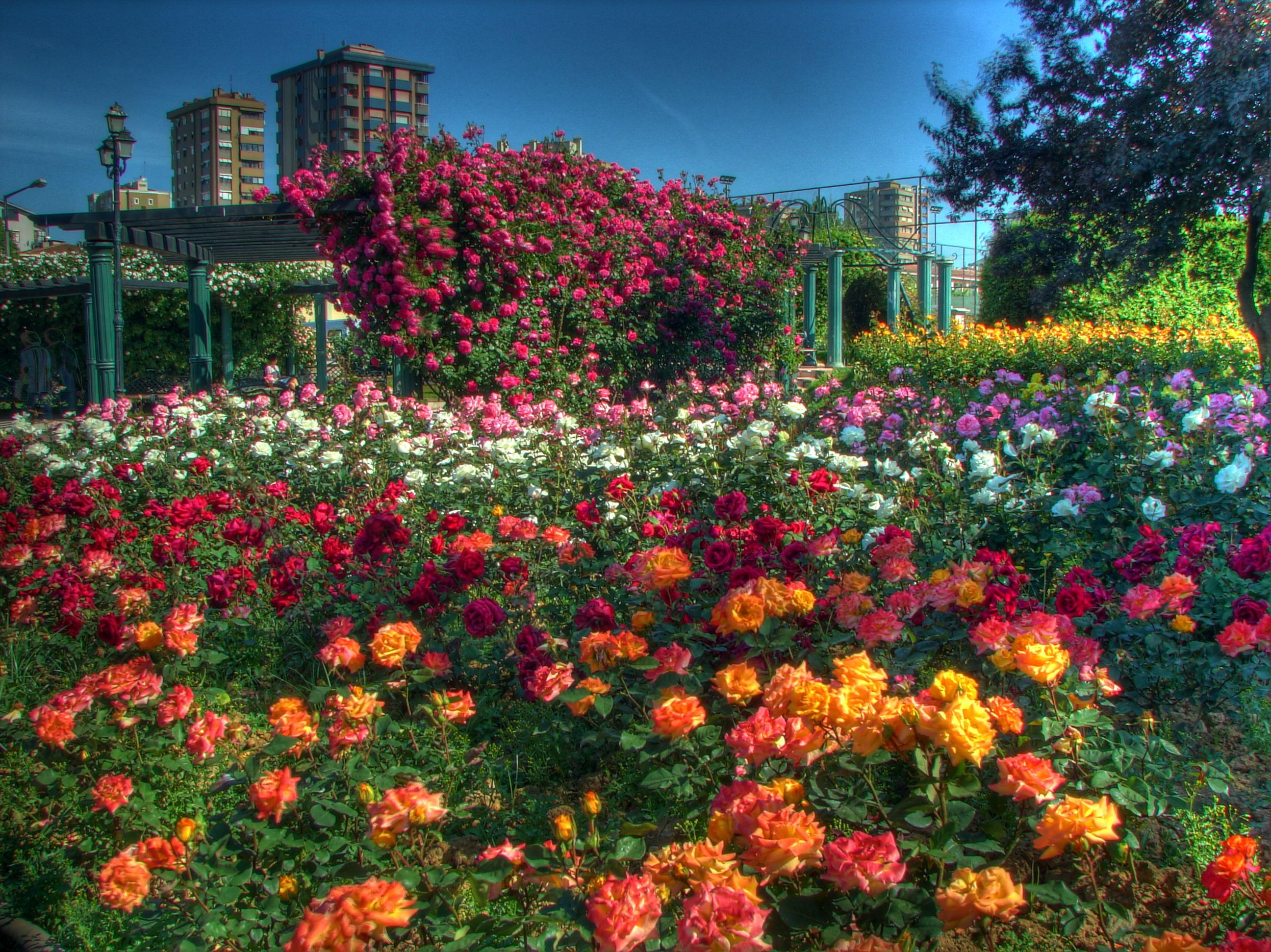 Göztepe Park, Kadıköy