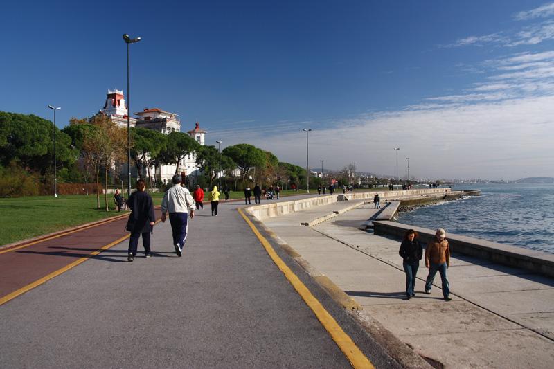 sahil