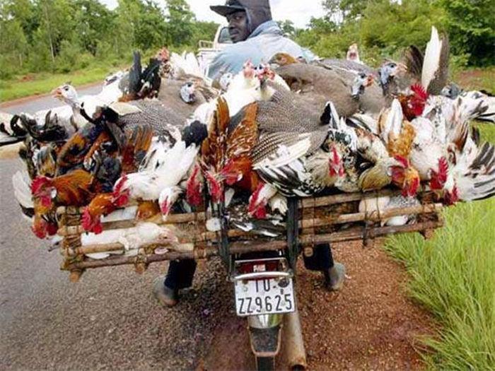 motosiklette yük taşımak
