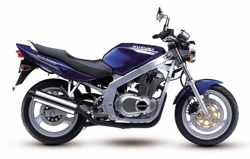 SUZUKİ GS 500
