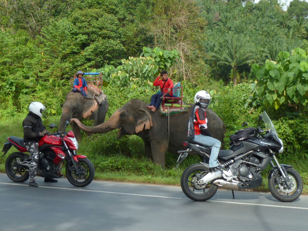 motorcycle-tour