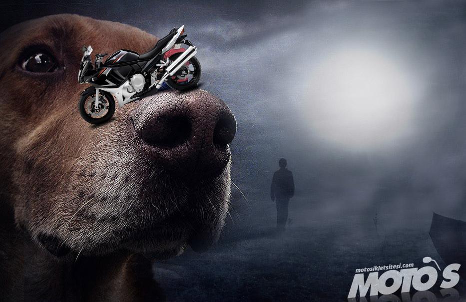 her-köpek-motorcu-sevmez