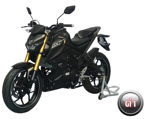 Yamaha MT-15 (M-Slaz) (2)
