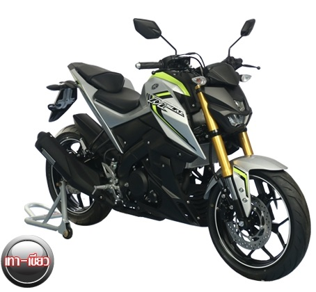 Yamaha MT-15 (M-Slaz) (4)
